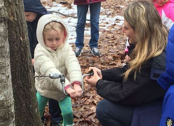 A young blond girl is holding a hand drill and is drilling into a maple tree. A blond woman is squat